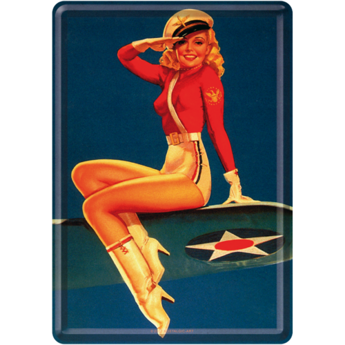Pin Up Girl Airforce Blechpostkarte Grußkarte 10x14cm